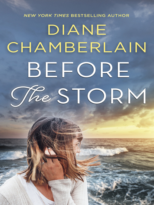 Title details for Before the Storm by Diane Chamberlain - Available