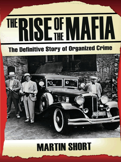 was the rise in organised crime The role of organized crime in the history and so organized their own protection the prohibition era of the 1920s gave rise to the organized crime syndicate.