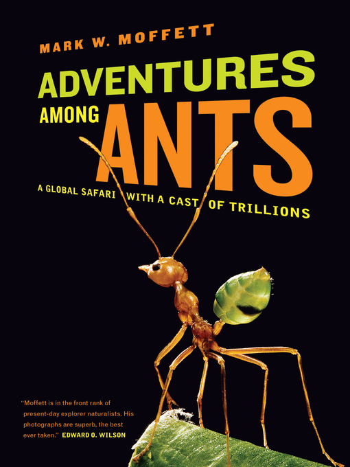 Title details for Adventures among Ants by Mark W. Moffett - Available