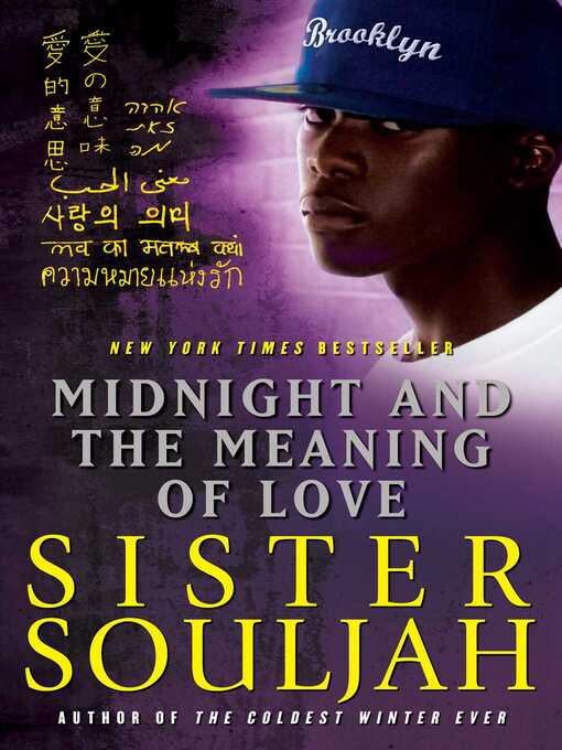 Title details for Midnight and the Meaning of Love by Sister Souljah - Wait list