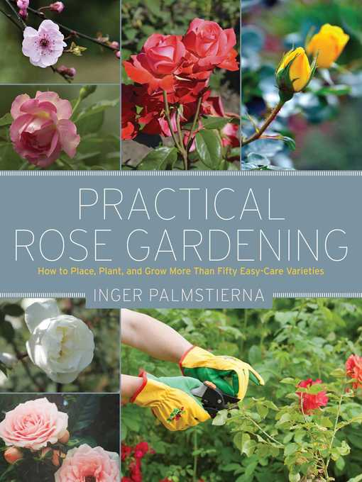 Title details for Practical Rose Gardening by Inger Palmstierna - Available