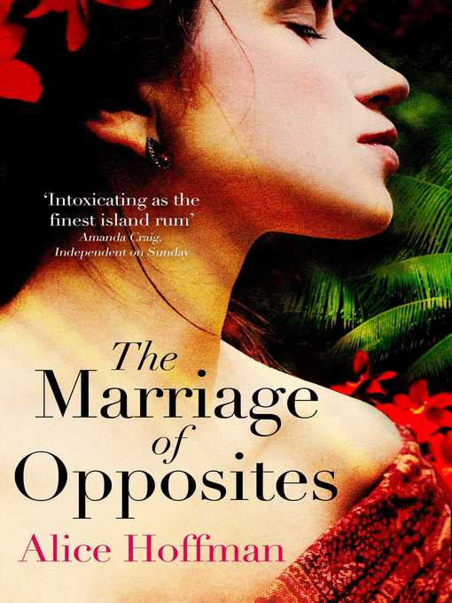 Title details for The Marriage of Opposites by Alice Hoffman - Wait list
