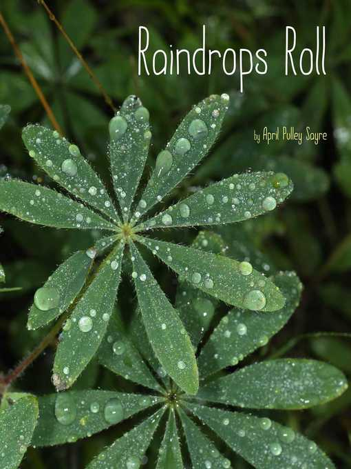 Title details for Raindrops Roll by April Pulley Sayre - Available