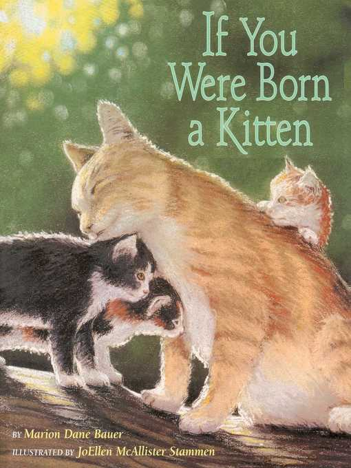 Title details for If You Were Born a Kitten by Marion  Dane Bauer - Wait list