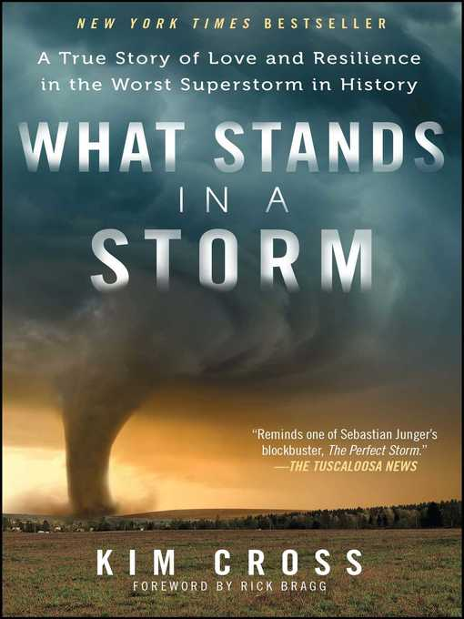 Title details for What Stands in a Storm by Kim Cross - Available