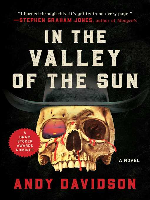 Title details for In the Valley of the Sun by Andy Davidson - Wait list