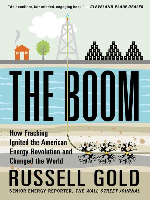 Title details for The Boom by Russell Gold - Wait list