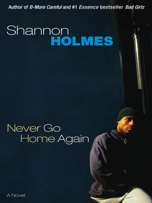 Title details for Never Go Home Again by Shannon Holmes - Wait list