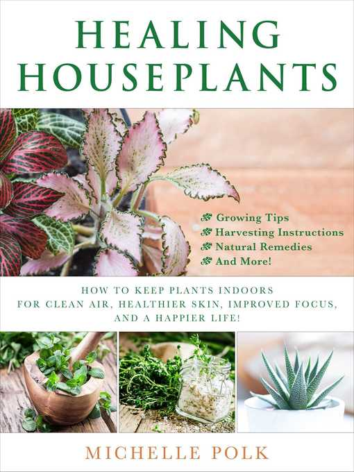 Healing Houseplants How to Keep Plants Indoors for Clean Air, Healthier Skin, Improved Focus, and a Happier Life!