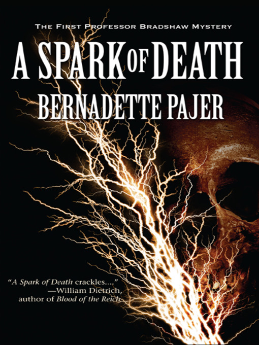 Title details for A Spark of Death by Bernadette Pajer - Available