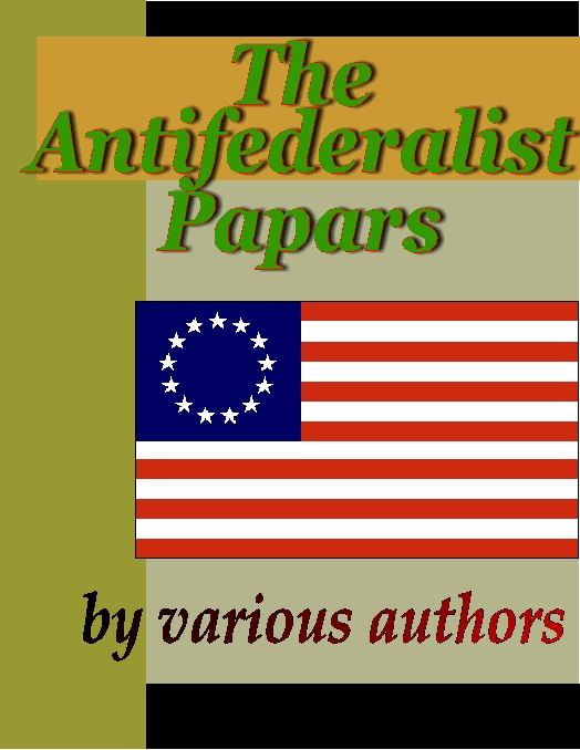 essay on federalists and antifederalists