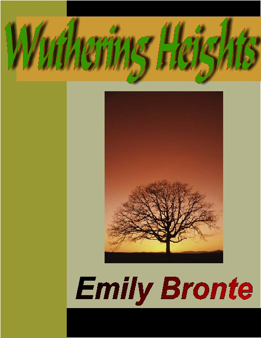 the various themes in emily bronts novel wuthering heights Introduction to the selection for wuthering heights by emily brontë  while the  novel isn't autobiographical, many similarities can be found between  another  recurring theme in the novel is the notion of thresholds through.