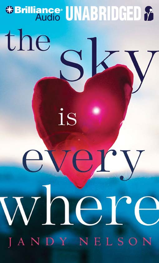 Title details for The Sky is Everywhere by Jandy Nelson - Wait list