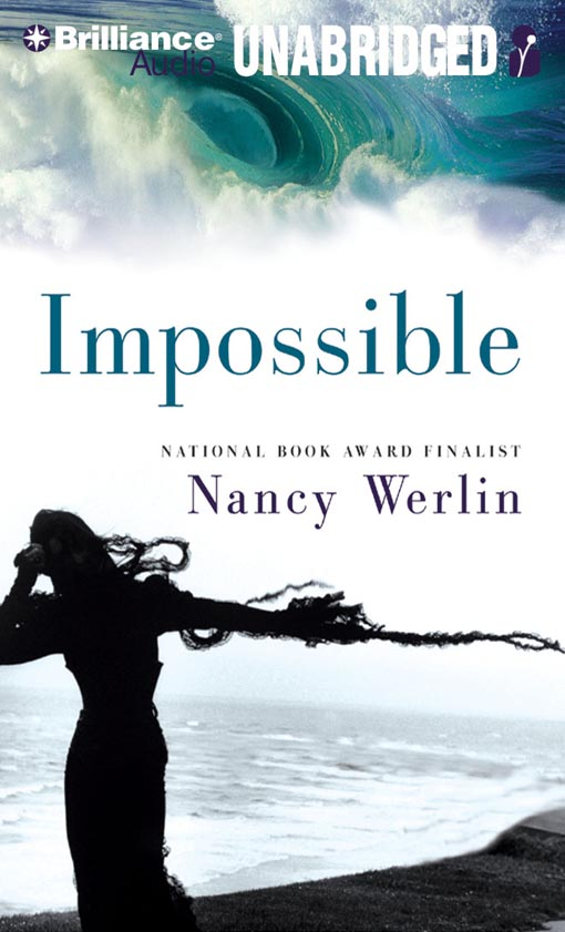 Title details for Impossible by Nancy Werlin - Wait list