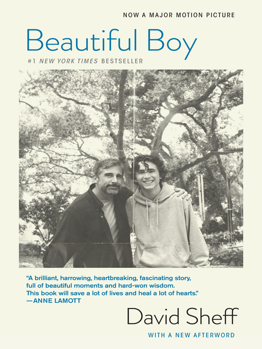 Title details for Beautiful Boy by David Sheff - Available