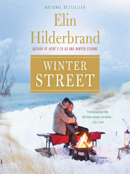 Title details for Winter Street by Elin Hilderbrand - Wait list
