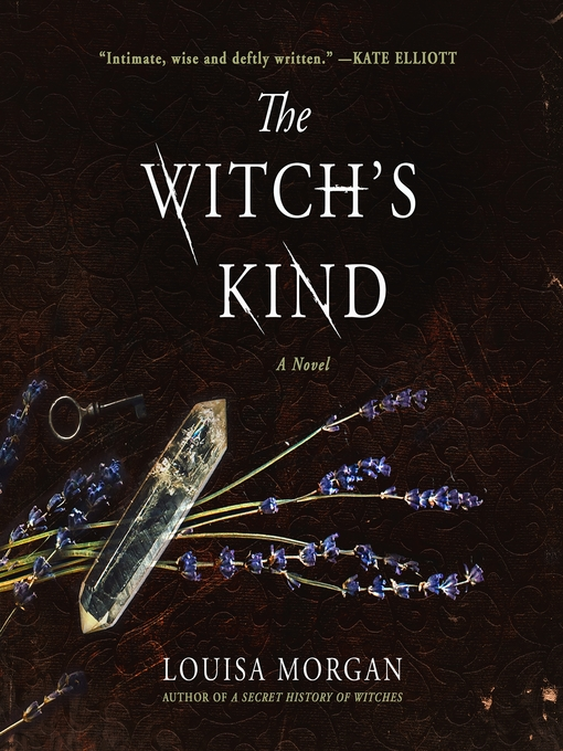 Title details for The Witch's Kind by Louisa Morgan - Wait list