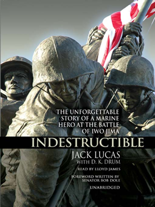 Cover of Indestructible