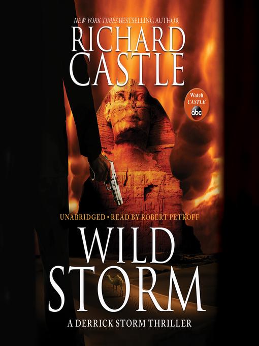 Title details for Wild Storm by Richard Castle - Wait list