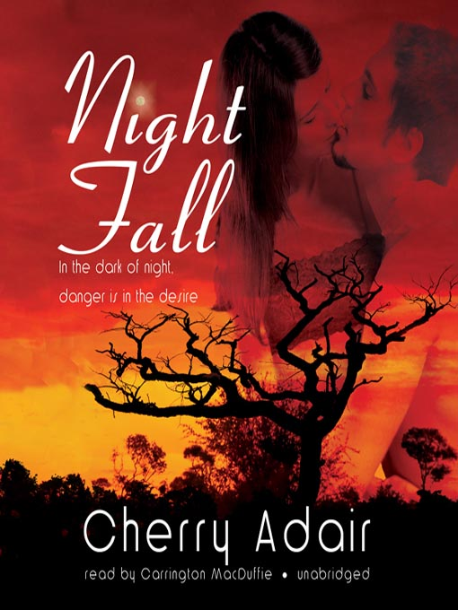Title details for Night Fall by Cherry Adair - Wait list
