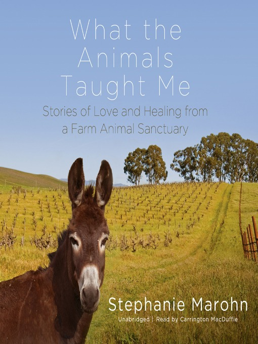 Title details for What the Animals Taught Me by Stephanie Marohn - Wait list