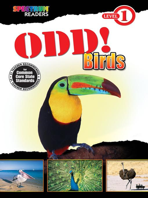 Cover image for Odd! Birds