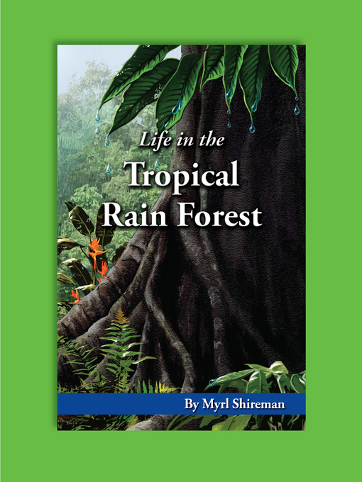 tropical rain forests essay Free essay: 311 why does life thrive in the tropical rainforest the tropical rainforest is very rich in water and food thus life thrives we all know.