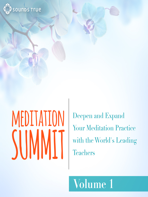 Title details for The Meditation Summit: Volume 1 by Reginald A. Ray - Available