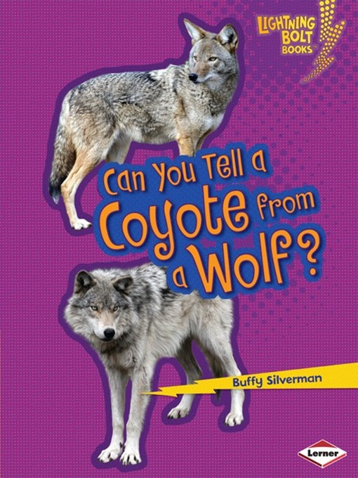 Title details for Can You Tell a Coyote from a Wolf? by Buffy Silverman - Available