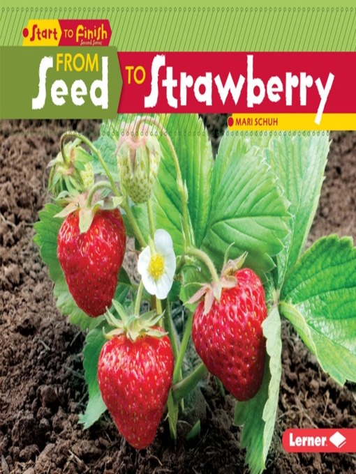 Title details for From Seed to Strawberry by Mari Schuh - Available