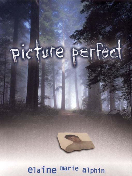Cover image for book: Picture Perfect
