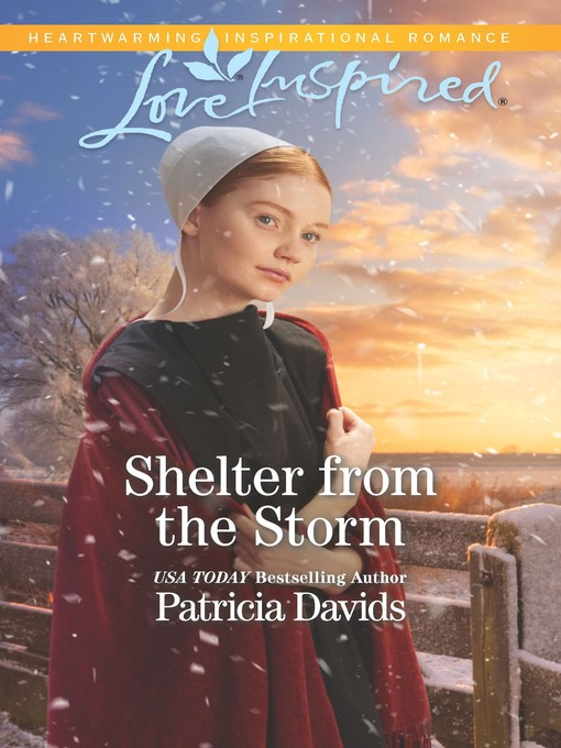 Title details for Shelter from the Storm by Patricia Davids - Wait list