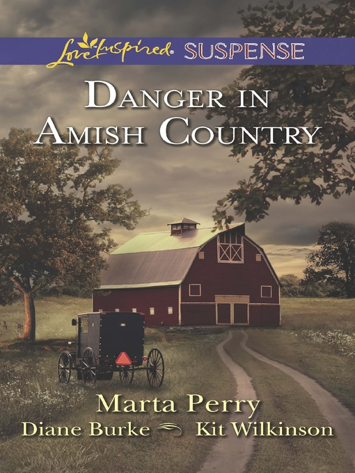 Title details for Danger in Amish Country: Fall from Grace\Dangerous Homecoming\Return to Willow Trace by Marta Perry - Wait list