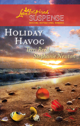 Title details for Holiday Havoc by Terri Reed - Wait list