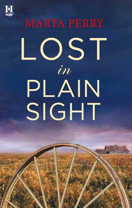 Cover of Lost in Plain Sight
