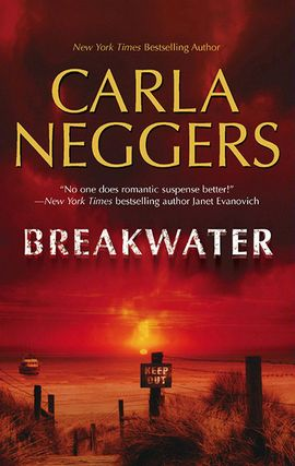 Cover image for Breakwater