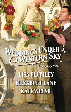 Title details for Weddings Under a Western Sky: The Hand-Me-Down Bride\The Bride Wore Britches\Something Borrowed, Something True by Elizabeth Lane - Available