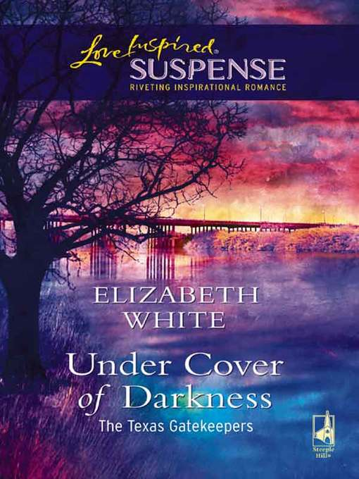 Title details for Under Cover Of Darkness by Elizabeth White - Available