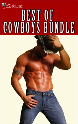 Title details for Best of Cowboys Bundle: Killer Cowboy Charm\Court Me, Cowboy\The Rancher Takes a Family\Not Your Average Cowboy\Her Texan Temptation\The Last Cowboy by Vicki Lewis Thompson - Available