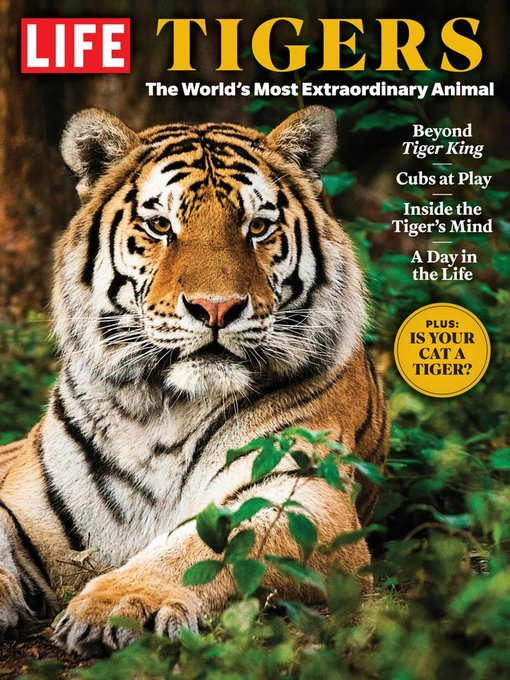 Title details for LIFE Tigers by Meredith Corporation - Available