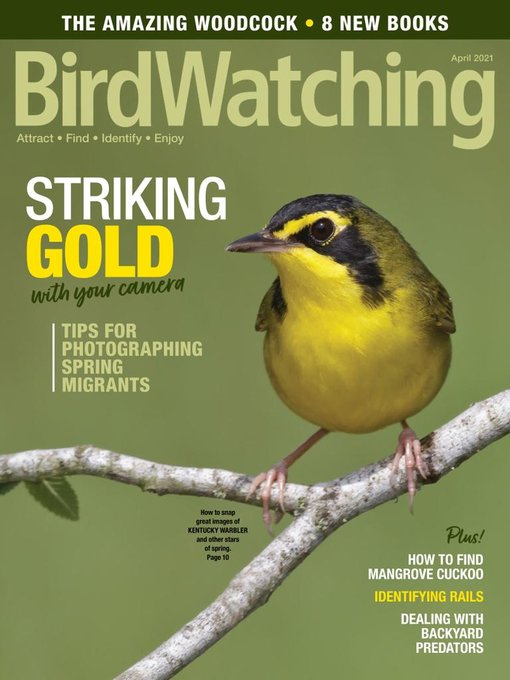 Title details for BirdWatching by Madavor Media, LLC - Available