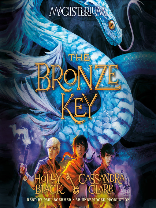 Cover of The Bronze Key