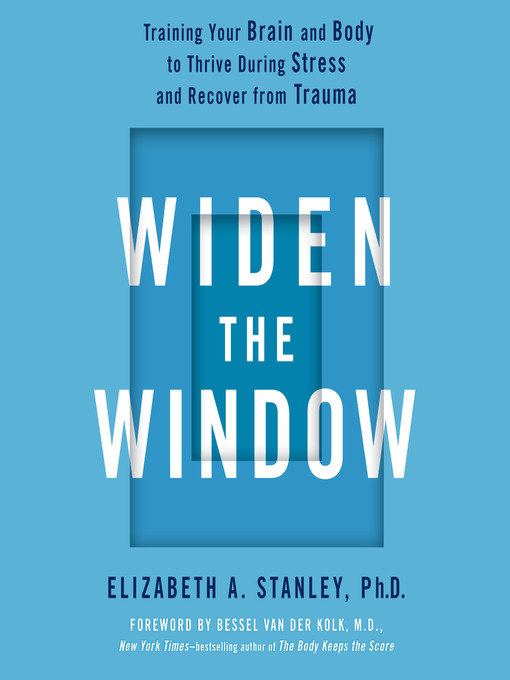 Cover of Widen the Window