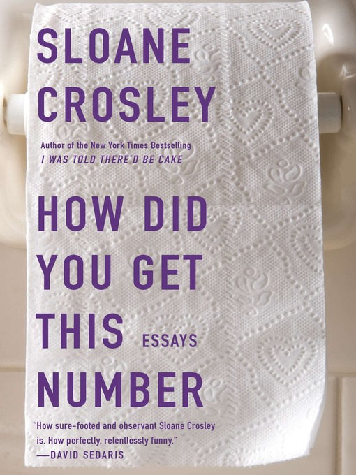Title details for How Did You Get This Number by Sloane Crosley - Available