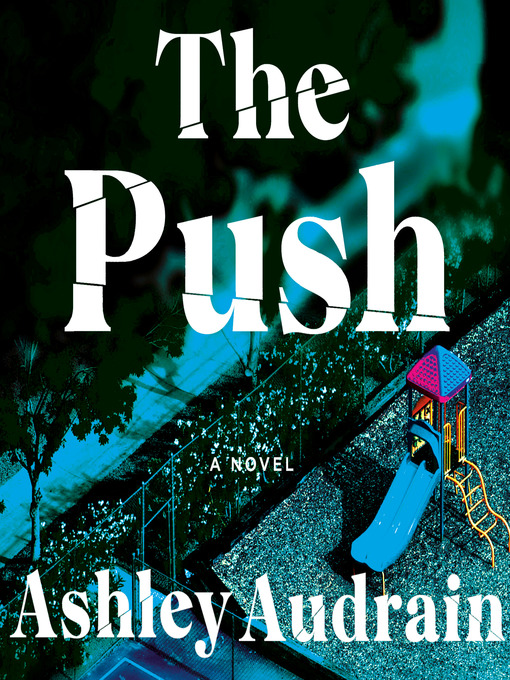Title details for The Push by Ashley Audrain - Wait list