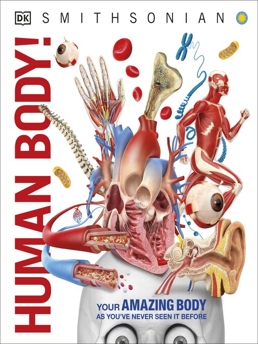 Cover image for Human Body!