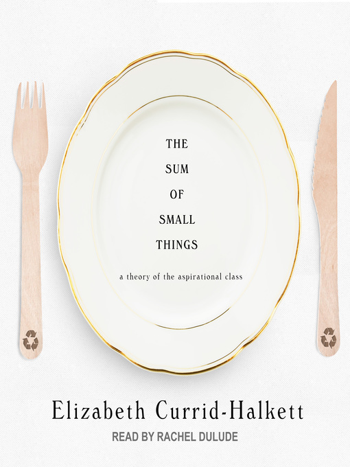 Title details for The Sum of Small Things by Elizabeth Currid-Halkett - Wait list