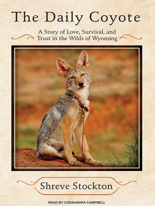 Title details for The Daily Coyote by Shreve Stockton - Available