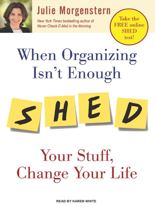 Title details for When Organizing Isn't Enough by Julie Morgenstern - Wait list