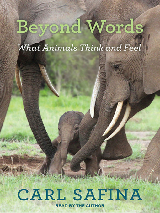 Title details for Beyond Words by Carl Safina - Available